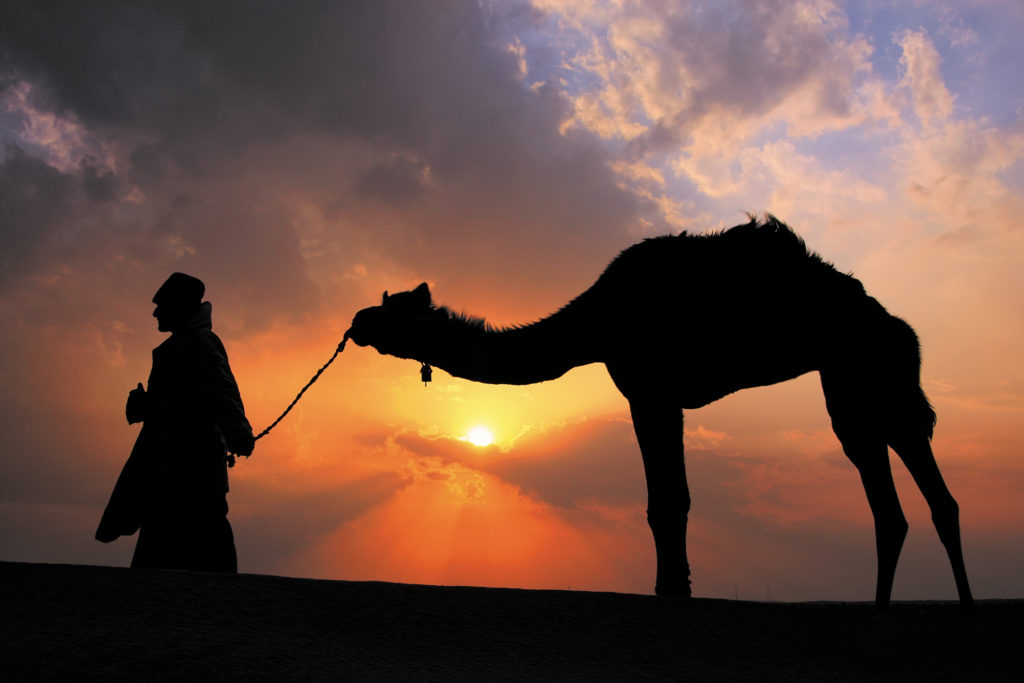 Silhouetted bedouin walking - History Adventures - Spencer Striker, PhD